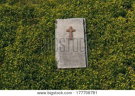 Christian graveyard surrounded by yellow flowers and green grass.