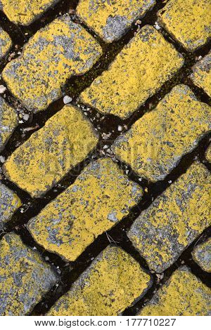 Detail of some Yellow cobble on the street