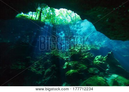 Entrance area of beautiful Azul cenote underwater cave, view from below