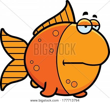 Bored Cartoon Goldfish