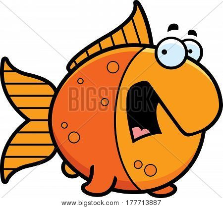Scared Cartoon Goldfish