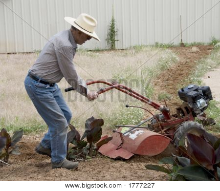 Year Old Man Plowing