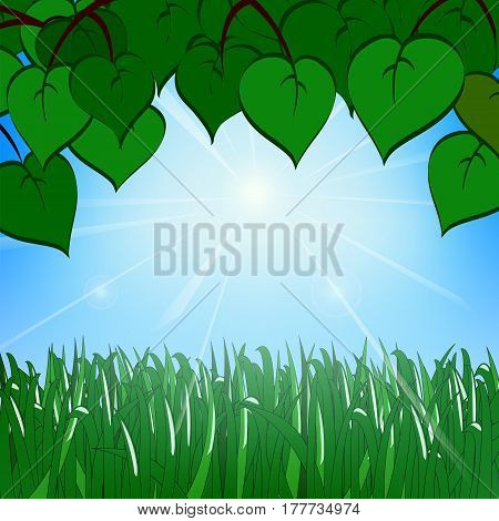 Green grass and leaves on the background of a sunny sky with glare