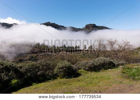 Great cloud in the mountains of Gran Canaria