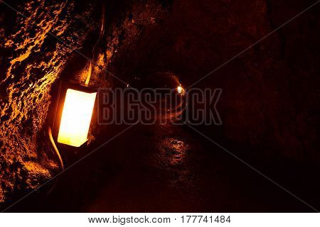 Thurston Lava Tube In Hawaii Volcano National Park, Big Island