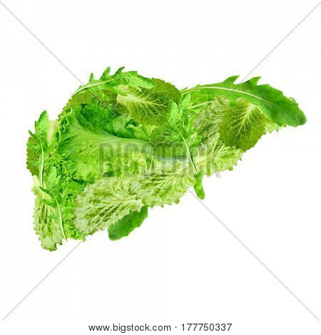 Health care concept. Liver made of organic food on white background
