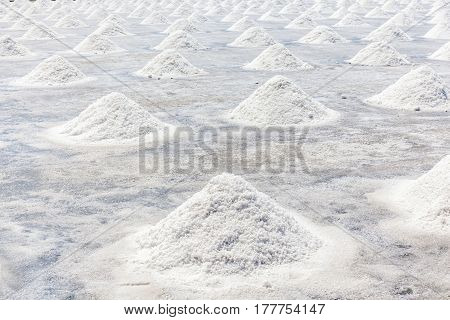 Sea salt production field in countryside of Thailand salt industry.