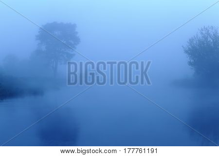 Misty Morning In Blue Colors