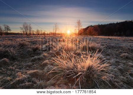 Beautiful Spring Sunrise