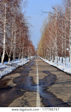 Road for jogging on a sunny early spring day