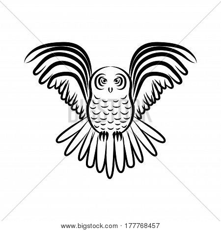 Flying owl silhouette isolated. Stock vector illustration of a bird in flight with stretched wings.