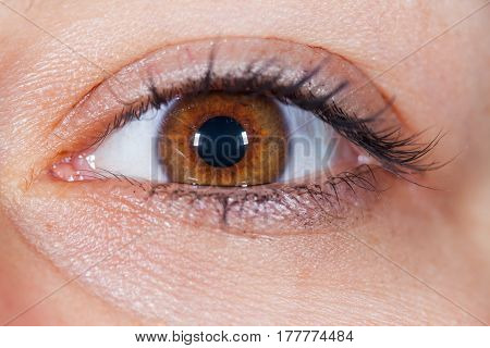 Extreme close up picture of a young woman's brown eye