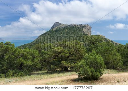 the mount Falcon Crimea / bright Sunny day Park trip Noviy Svet