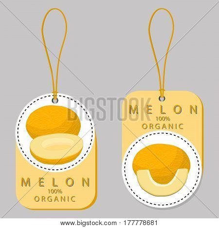 Vector illustration logo for whole ripe fruit yellow melon,cut half sliced cantaloupe on background.
