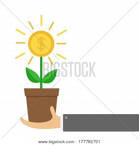 Businessman hand holding Growing money tree big shining coin with dollar sign Plant in the pot. Financial growth concept. Successful business icon. Flat design. White background. Isolated. Vector