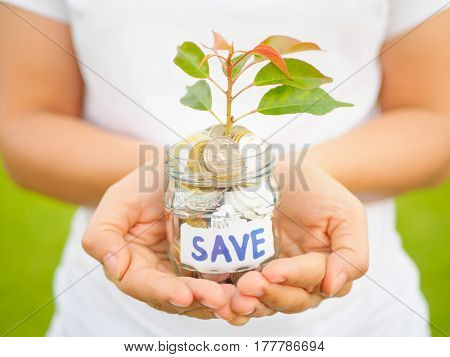 Women hand holding plant growing out of coins in glass jar on the green grass for money saving financial concept