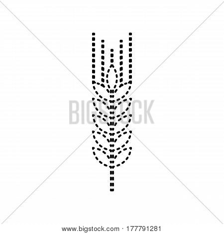 Wheat sign illustration. Spike. Spica. Vector. Black dashed icon on white background. Isolated.