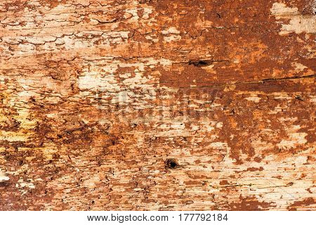 Old Worn Scratched Grungy Wooden Background Of An Old Chest