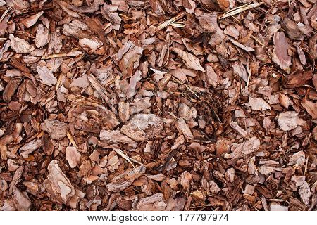 Brown natural organic Mulch Bark Texture background