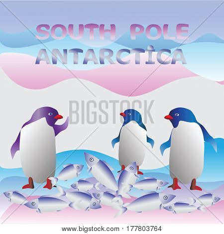 Penguins. South pole. Antarctica. Cute penguins with a good catch of fish. Vector image. Christmas cards or travel poster.