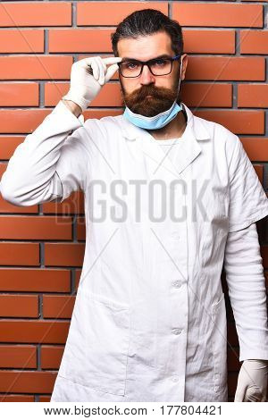 Bearded Brutal Caucasian Doctor Or Postgraduate Student In Gloves