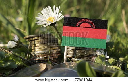 Malawi flag with stack of money coins with grass and flowers