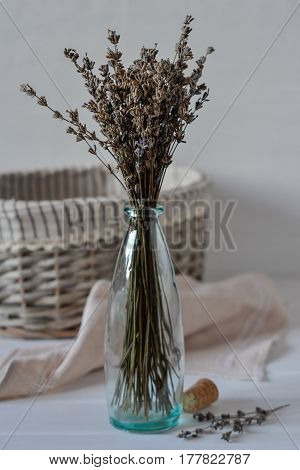 Bunch of dried lavender herb and lavender flowers in a glass  vase