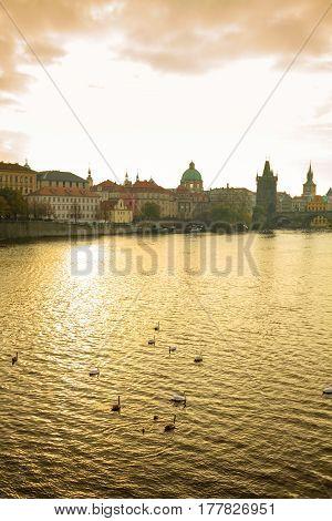 Gold reflection on Veltawa river view on wharf near Charles Bridge in Prague Czechia.