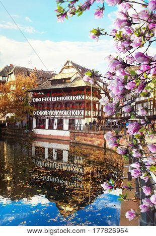 Petit France medieval old town district of Strasbourg at spring, Alsace France