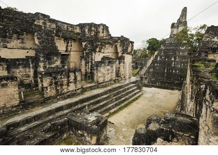 The Mayan Ruins Of Tikal