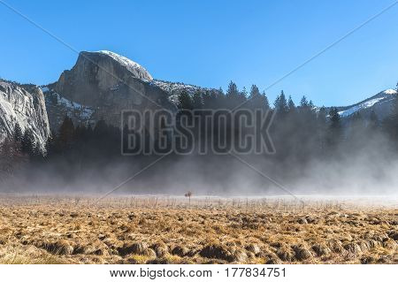 Half dome view from Yosemite Valley in the early morning with fog or mist in the foreground.