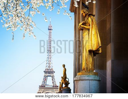 eiffel tour and statues of Trocadero garden, dating from the 1930s, spring day, Paris, France