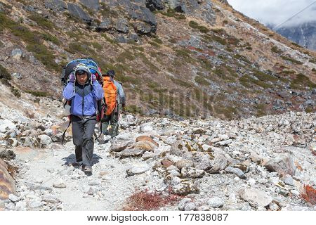Young Nepalese Porter carrying heavy Weight Luggage of Mountain Expedition on rocky Footpath. Nepal, Solo-Khumbu region, trek to Meru Peak, November 3, 2016