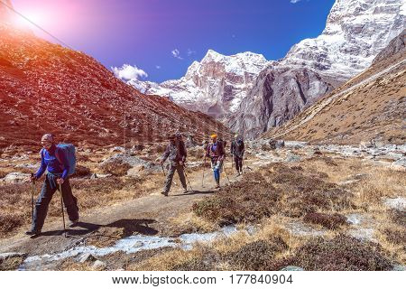 Sport Team of Mountain Climbers walking on Footpath among Rocks and Walls approaching to high Altitude Camp site during bright Spring Day with shining Sun