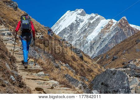 Man walking on Footpath in Nepal trekking carrying Backpack with Solar Panel attached for charging Battery of mobile Telephone snowy high altitude Summits and Peaks on Background.