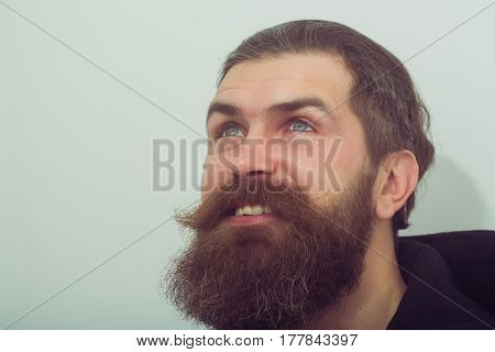 Bearded Smiling Happy Brutal Caucasian Man Look Up