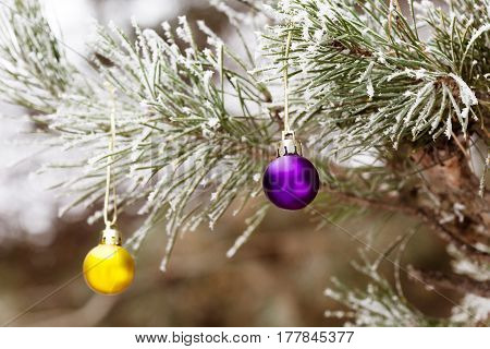 Outdoor Christmas Tree with frozen Branches and Needles decorated by New Year balls and toys