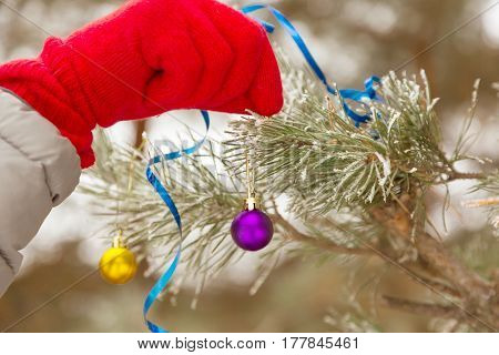 Human Hand in red Glove decorating outdoor frozen covered by hoar and snow Christmas Tree with Balls and Toys