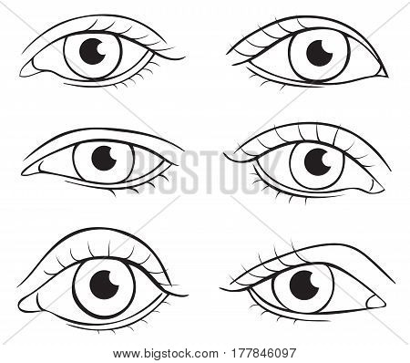 Illustration on white background outline of human eyes of different shapes