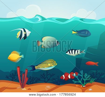 Underwater colorful fishes at tropical sea or ocean. Golden fish and discus, heros and uaru, emperor angelfish and hypselecara with corals. Nautical and marine, water wildlife fauna theme