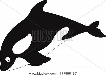 Cartoon Killer Whale For Babies And Little Kids