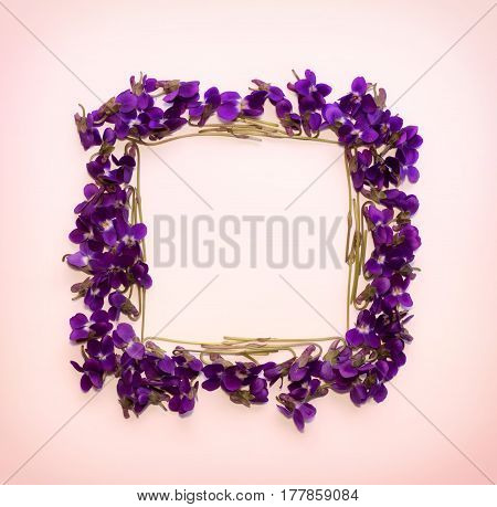 Floral pattern square Frame made of small forest flowers violet with empty space for text on a on pink background. Flat lay top view