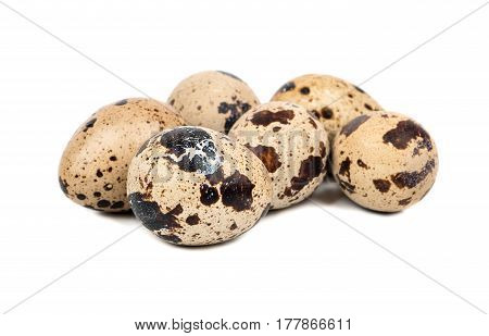 Several raw quail eggs on a white background