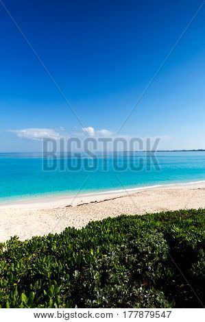 The beach, vegetation, and the ocean from a high point of view. New Providence, Nassau, Bahamas.