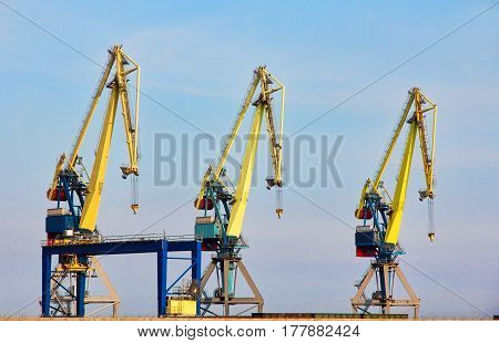 Three dock cranes in seaport against of the blue sky.