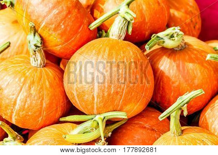 Orage pumpkins for sale in thailand market.