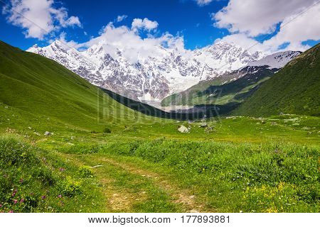 Alpine scenery with big mountains covered with glaciers and green lawns with different flowers trails and sky on a summer day.