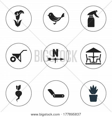 Set Of 9 Editable Planting Icons. Includes Symbols Such As Clasp Knife, Radish, Garden Seat And More. Can Be Used For Web, Mobile, UI And Infographic Design.