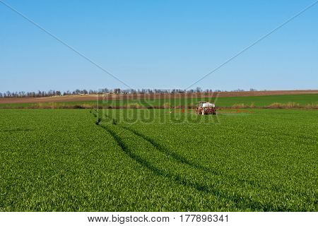 Tractor spraying pesticide in a field of wheat - copy space
