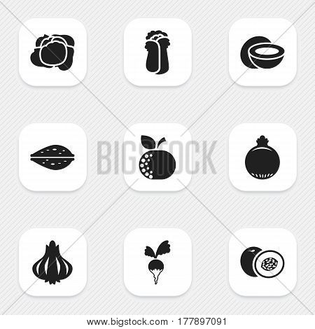 Set Of 9 Editable Cookware Icons. Includes Symbols Such As Cokernut, Cabbage, Nectarine And More. Can Be Used For Web, Mobile, UI And Infographic Design.
